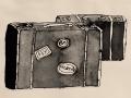 37-Les-valises